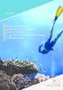 Analyse du métier de moniteur de plongée dans le cadre d'un environnement complexe en Martinique - URL